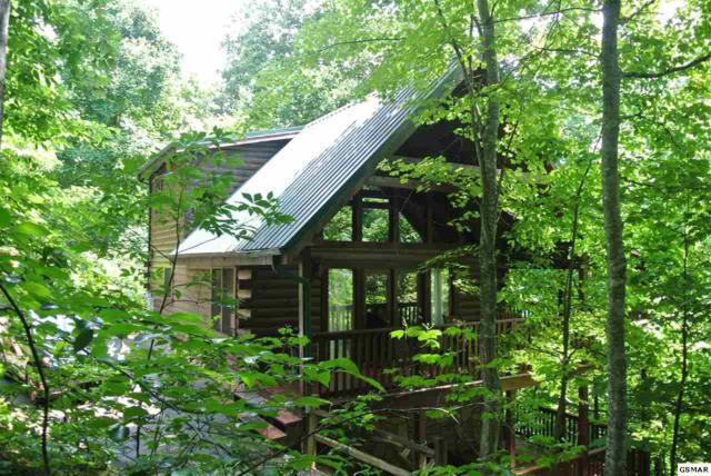 733 Yona Trail Way, Gatlinburg, TN 37738 (#217000) :: Four Seasons Realty, Inc