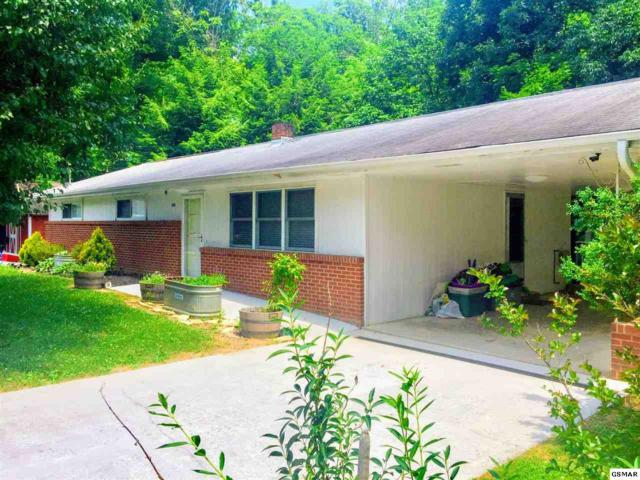 405 Oak Drive, Sevierville, TN 37862 (#217005) :: SMOKY's Real Estate LLC