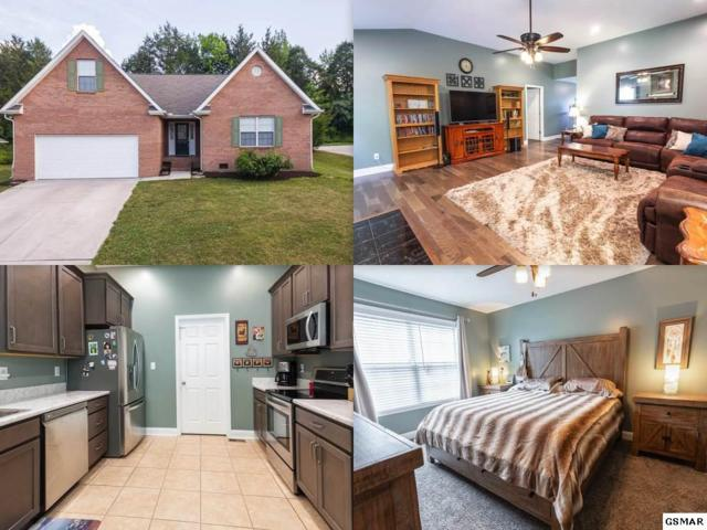 7605 Wilderness Path Road, Corryton, TN 37721 (#217014) :: Four Seasons Realty, Inc