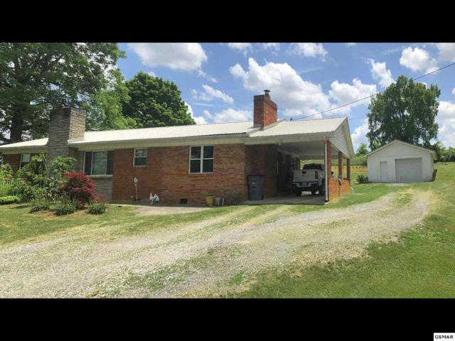 8186 Saint Clair Road, Whitesburg, TN 37891 (#217015) :: Four Seasons Realty, Inc