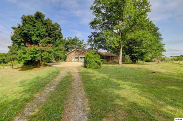 2861 Boyds Creek Hwy, Sevierville, TN 37876 (#217019) :: Billy Houston Group