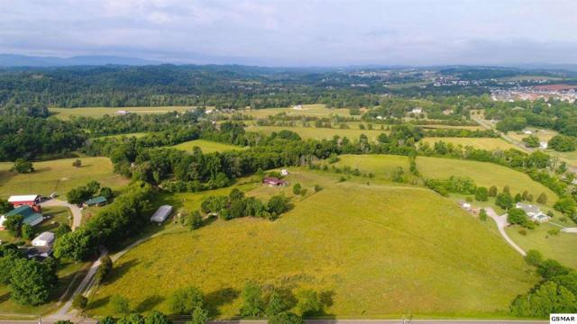 Boyds Creek Highway, Sevierville, TN 37876 (#217021) :: Billy Houston Group