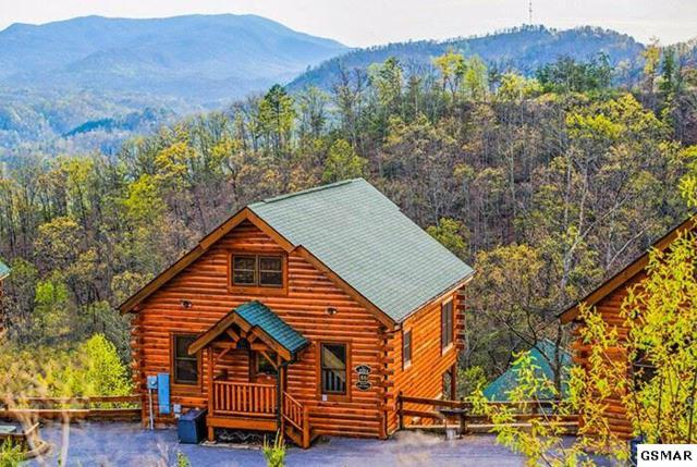 """2204 Towering Hemlock Dr """"Views Of God's, Sevierville, TN 37876 (#217032) :: Billy Houston Group"""