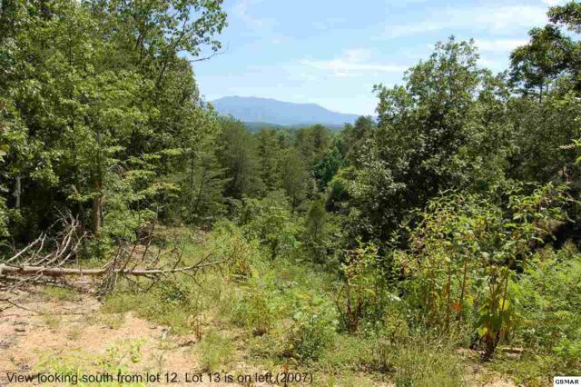Lot 13&14 Tanglewood Dr, Sevierville, TN 37876 (#217033) :: Billy Houston Group