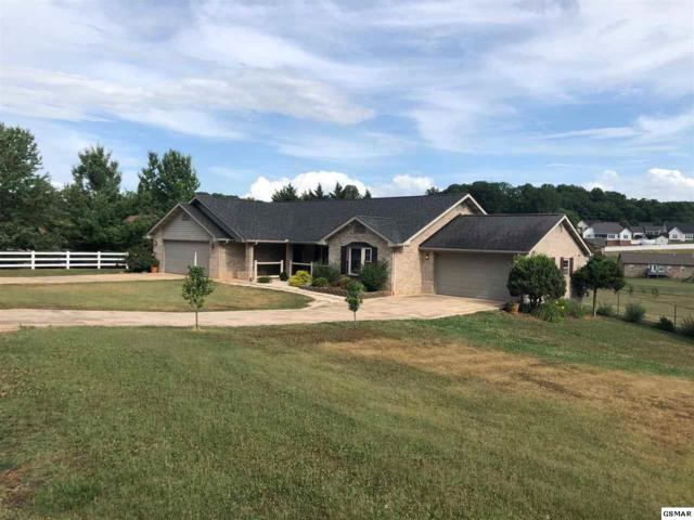 1514 Double D Dr, Sevierville, TN 37876 (#217051) :: Colonial Real Estate