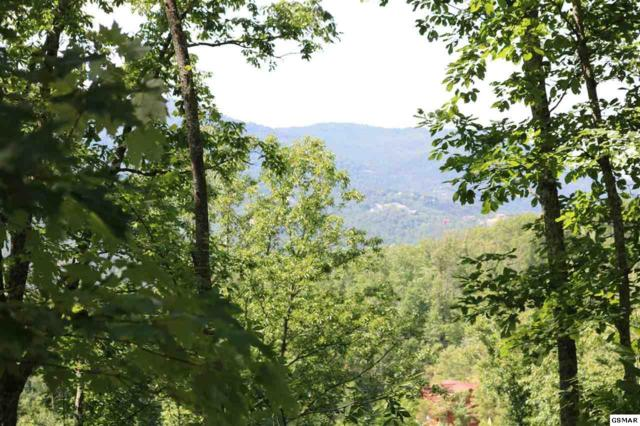 Lot 42-45 Coopers Hawk Way, Sevierville, TN 37862 (#217064) :: The Terrell Team