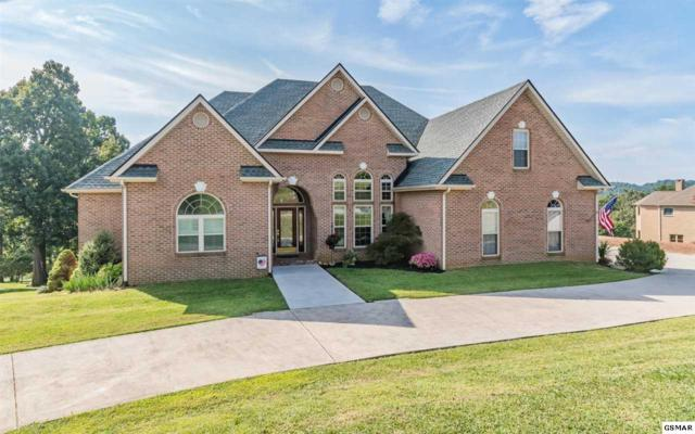 372 Independence Dr, Jefferson City, TN 37760 (#217076) :: Billy Houston Group