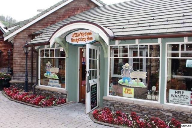 651 Parkway Shop 104, Gatlinburg, TN 37738 (#217110) :: Billy Houston Group