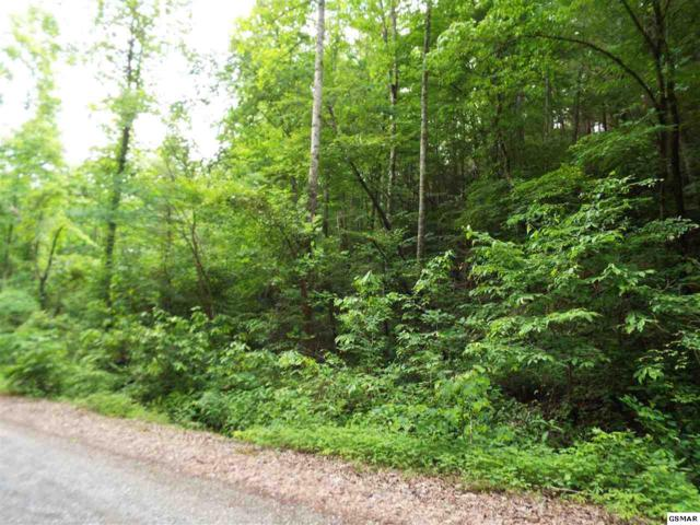 Lot 0005 Emerald Springs Loop Rd, Sevierville, TN 37862 (#217155) :: Billy Houston Group