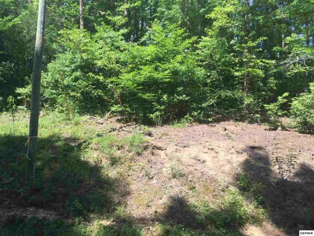 Lot 10 Whisper Creek Ln, Sevierville, TN 37862 (#217159) :: Billy Houston Group