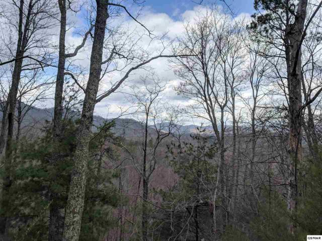 Lot 0001 Emerald Springs Loop, Sevierville, TN 37862 (#217163) :: Billy Houston Group