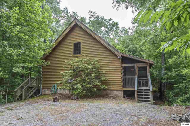 4234 Whetstone Rd, Sevierville, TN 37862 (#217183) :: Four Seasons Realty, Inc