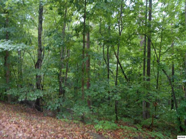 Lot 68 Mountain View Rd, Sevierville, TN 37876 (#217193) :: Billy Houston Group