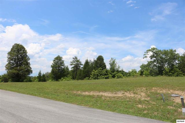 Lot 72 Sanctuary Shores Way, Sevierville, TN 37876 (#217195) :: Colonial Real Estate