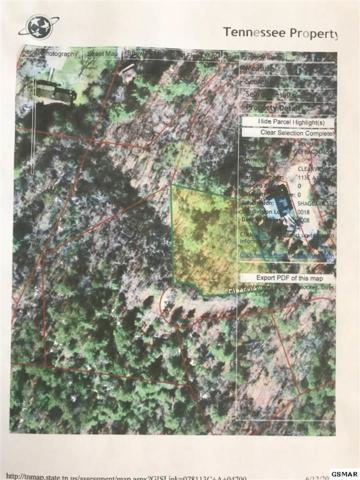 Lot Lot Lot Lot 18 Clearview Cir, Sevierville, TN 37862 (#217220) :: Billy Houston Group