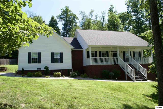 662 Hinkle Rd, Seymour, TN 37865 (#217244) :: Colonial Real Estate