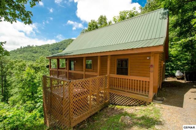 2712 Overholt Trail, Sevierville, TN 37862 (#217245) :: Colonial Real Estate