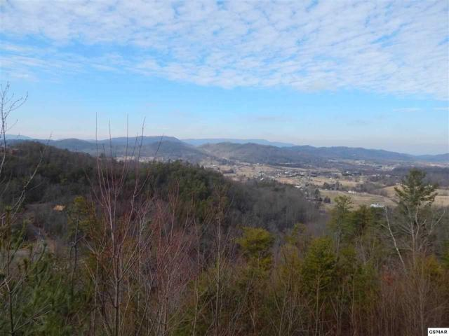 Lot 11 Edge Park Dr, Sevierville, TN 37862 (#217246) :: Billy Houston Group