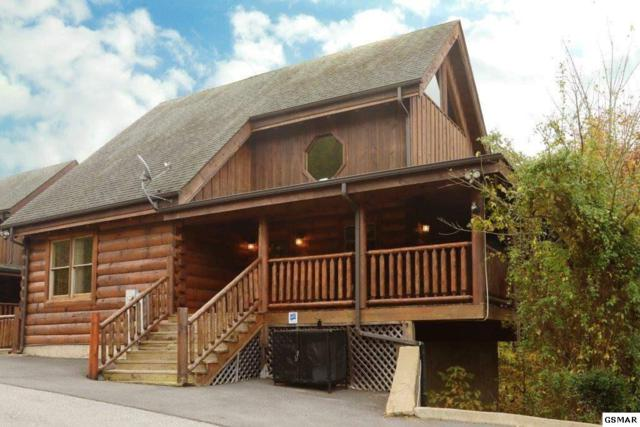 2106 Bear Haven Way Amazing Grace, Sevierville, TN 37876 (#217255) :: Colonial Real Estate