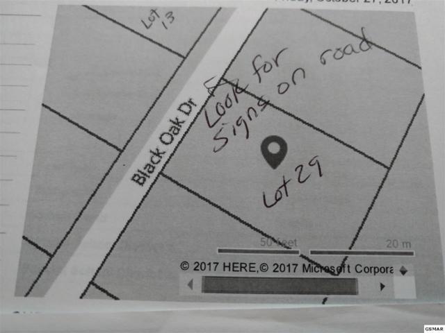 Lot 29 Black Oak Dr, Sevierville, TN 37876 (#217269) :: Billy Houston Group