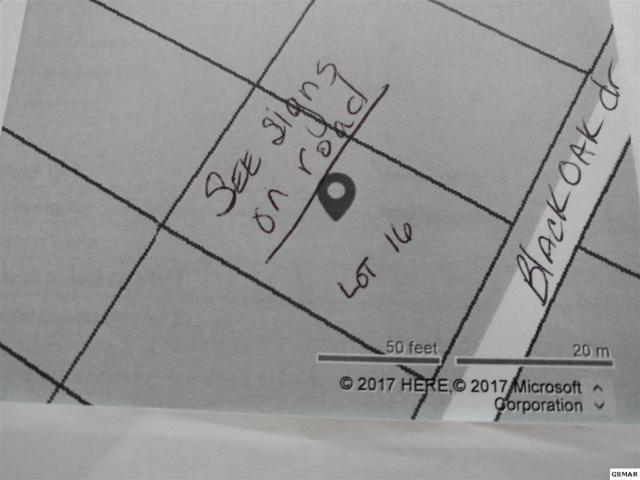 Lot 16 Black Oak Dr, Sevierville, TN 37876 (#217273) :: Billy Houston Group