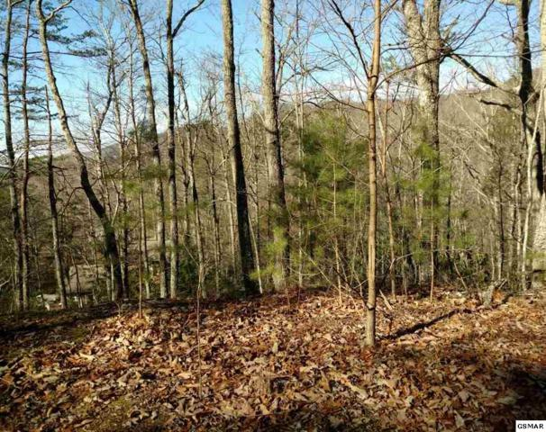 Lot 21 Linwood Court, Sevierville, TN 37876 (#217282) :: Billy Houston Group