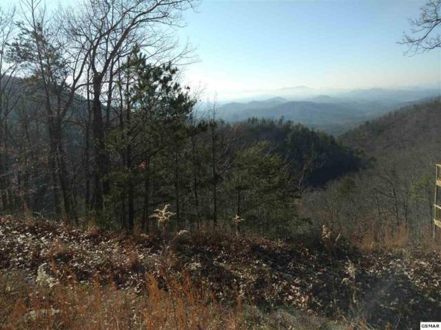 Lot 12 Maple Lane, Sevierville, TN  (#217284) :: Billy Houston Group