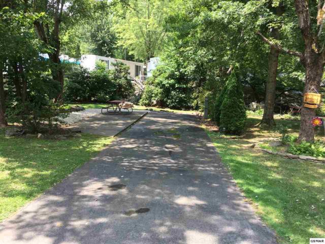 Lot#287  4229 E Parkway Vacant, Gatlinburg, TN 37738 (#217288) :: Billy Houston Group
