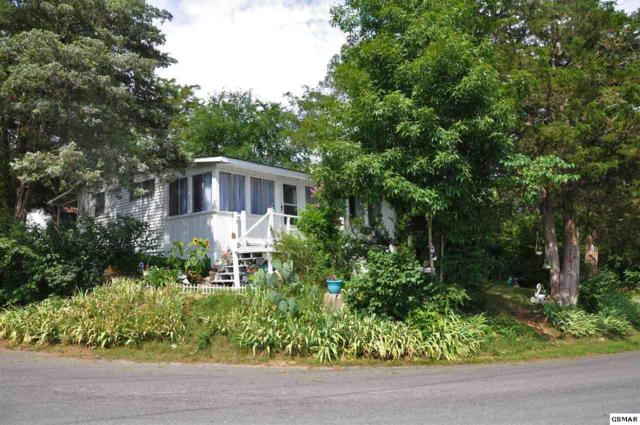 1578 Parrotts Chapel Rd, Sevierville, TN 37876 (#217307) :: Colonial Real Estate