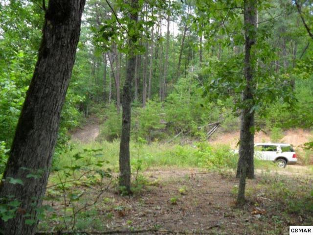 376 Summer House Hollow Rd, Del Rio, TN 37727 (#217309) :: Colonial Real Estate