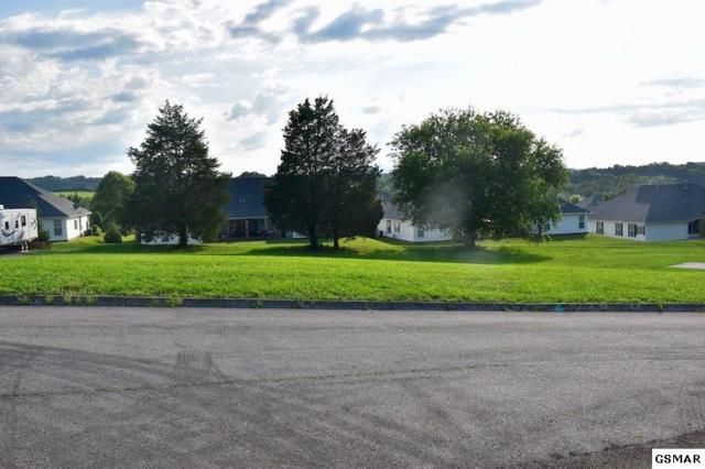 Lot 2 Summerfield Ln, Sevierville, TN 37876 (#217312) :: Billy Houston Group