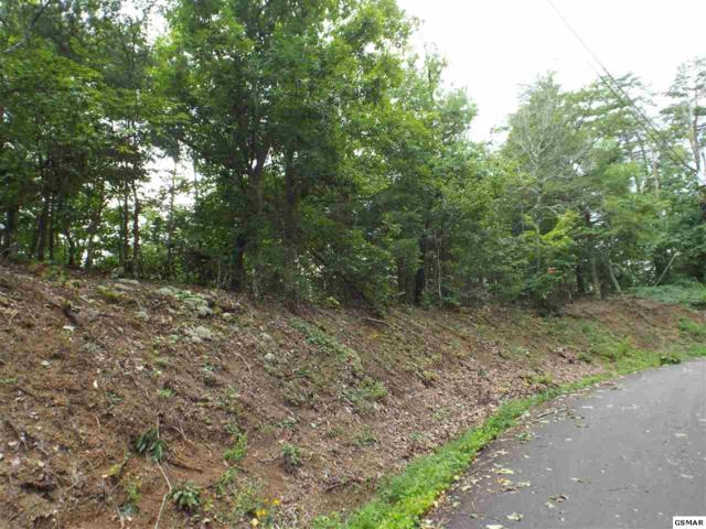 #4 Lloyd Huskey Rd, Pigeon Forge, TN 37863 (#217318) :: Colonial Real Estate