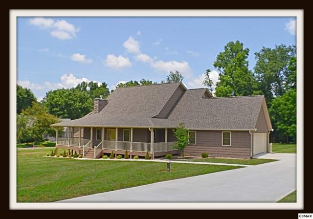 3544 Deer Field Cir Peaceful, Easy , Sevierville, TN 37862 (#217348) :: Colonial Real Estate