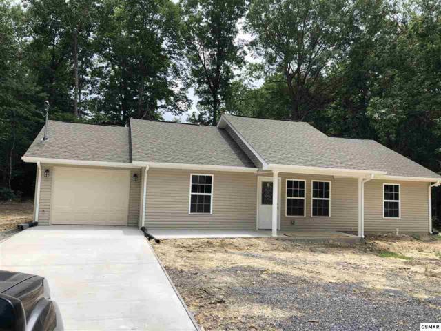 534 Shellbark Rd, Newport, TN 37821 (#217351) :: SMOKY's Real Estate LLC