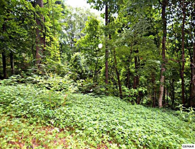 Lot 10 N Baden Drive, Gatlinburg, TN 37738 (#217353) :: Colonial Real Estate