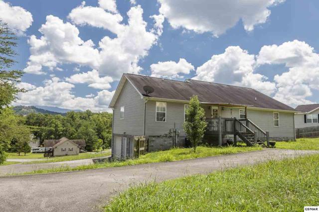 1304 Deer Meadows Rd, Sevierville, TN 37862 (#217359) :: The Terrell Team