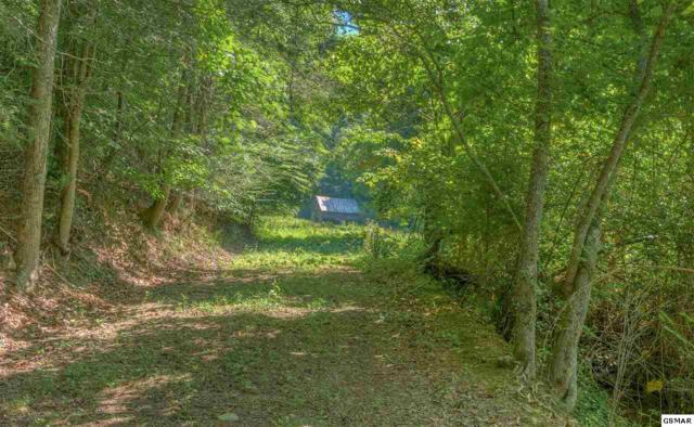 Jones Cove Road Parcel 142.00, Sevierville, TN 37876 (#217371) :: Colonial Real Estate