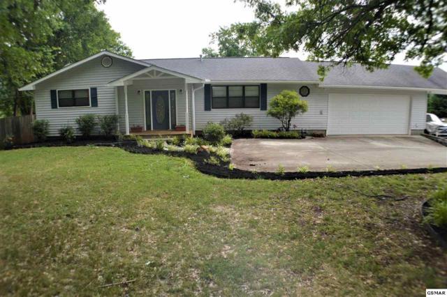 648 Chilhowee School Rd, Seymour, TN 37865 (#217387) :: Colonial Real Estate