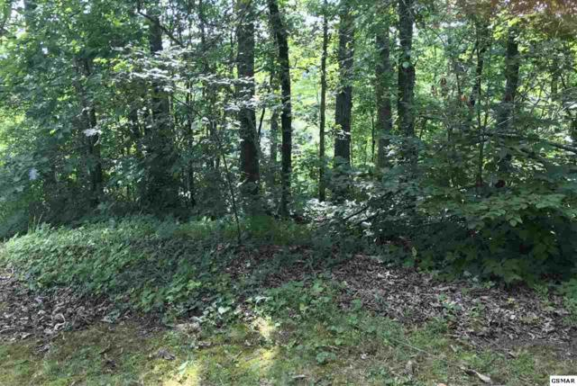 Lot 71 & 71E Sunrise Blvd Paradise Ridge , Sevierville, TN 37862 (#217388) :: Billy Houston Group