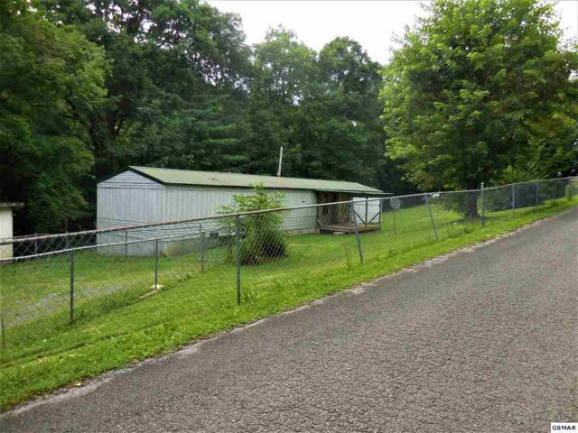 495 Punkton Rd., Del Rio, TN 37727 (#217399) :: Colonial Real Estate