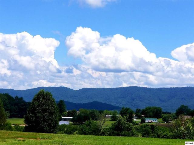3351 Old Plantation Way, Maryville, TN 37804 (#217400) :: Billy Houston Group