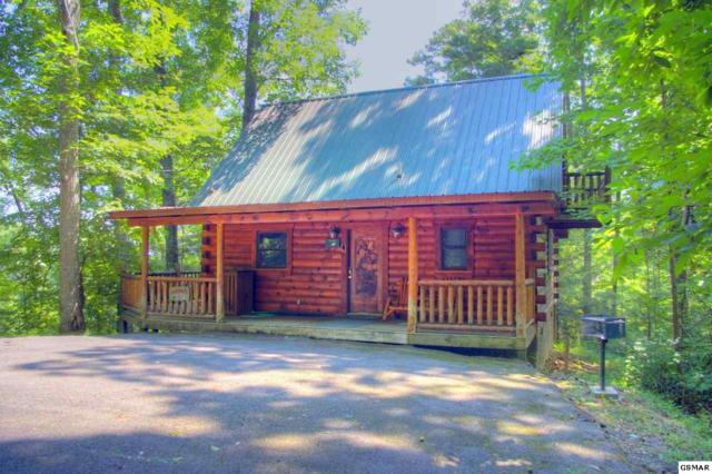 4219 Alyssa Way Happily Ever Af, Gatlinburg, TN 37738 (#217408) :: Colonial Real Estate