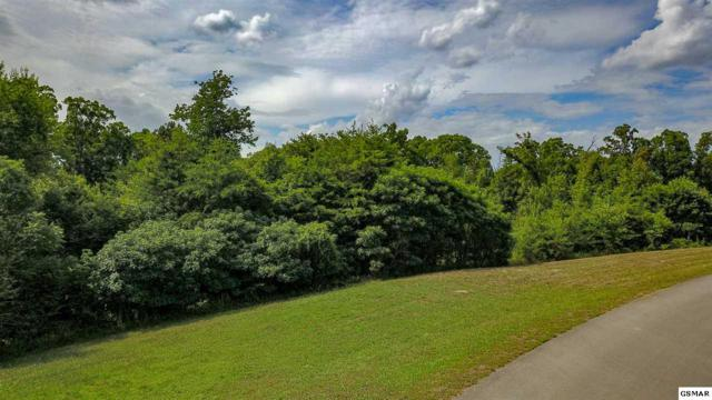 Indian Indian Shadows Drive, Maryville, TN 37801 (#217413) :: Billy Houston Group