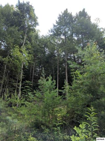 Rail Hill Ln Lot 7, Sevierville, TN 37876 (#217417) :: Billy Houston Group