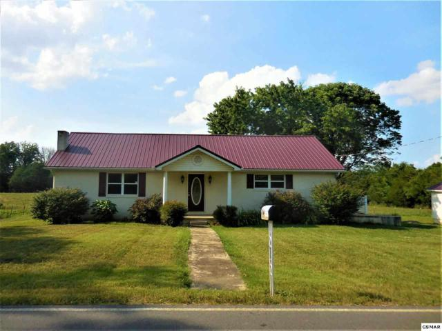 856 Hinchey Hollow Rd., New Market, TN 37820 (#217428) :: Colonial Real Estate
