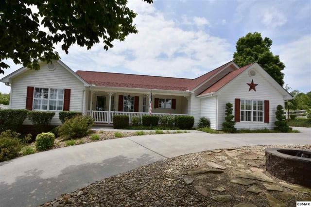 1233 Old Red Ln, Sevierville, TN 37876 (#217434) :: Colonial Real Estate