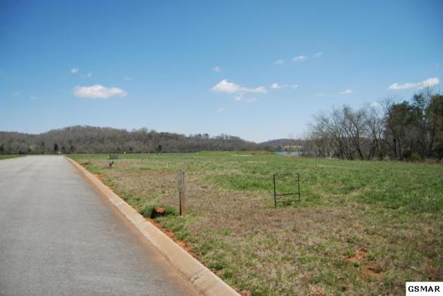271 Cape Code Lgt, Loudon, TN 37774 (#217441) :: Billy Houston Group