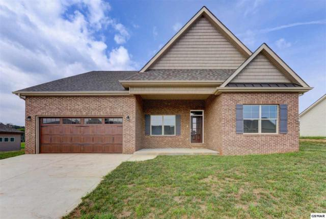 1223 Beaumont Ave, Sevierville, TN 37876 (#217449) :: Colonial Real Estate