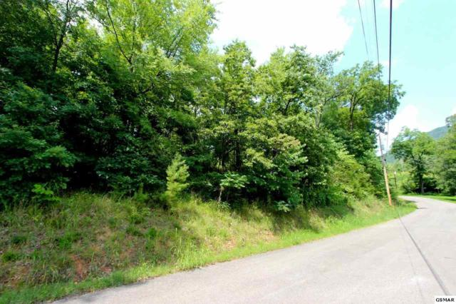 LOT 1 Tomahawk Ridge Rd, Cosby, TN 37722 (#217458) :: The Terrell Team