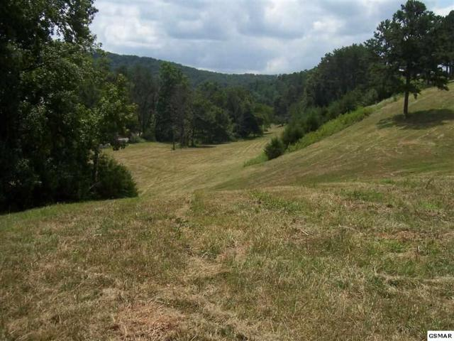 00 Mortar Road Parcel 057.05, Sevierville, TN 37876 (#217460) :: Billy Houston Group